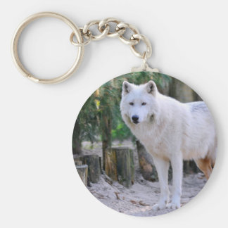 Arctic Wolf in the forest Key Chains