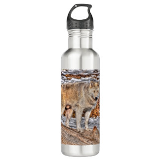 Arctic Wolf in Winter Forest Wildlife Photo Water Bottle