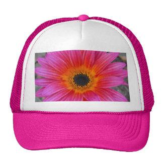Arctotis - African Daisy Trucker Hat