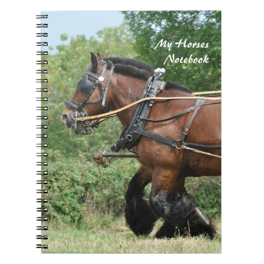 Ardennes horses notebook