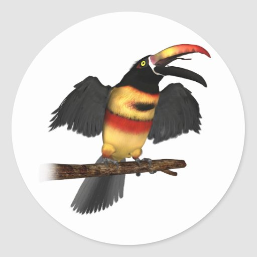 Ardiente-Bill Aracari Etiquetas Redondas