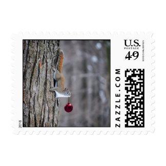 Ardilla con el franqueo del ornamento del navidad  sellos
