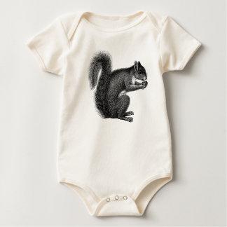 Ardilla con la enredadera del niño de la nuez body para bebé