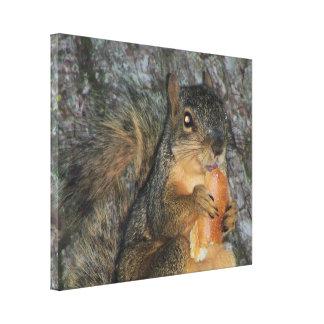 Ardilla de Fox adorable en un árbol que come un Impresión En Lona Estirada