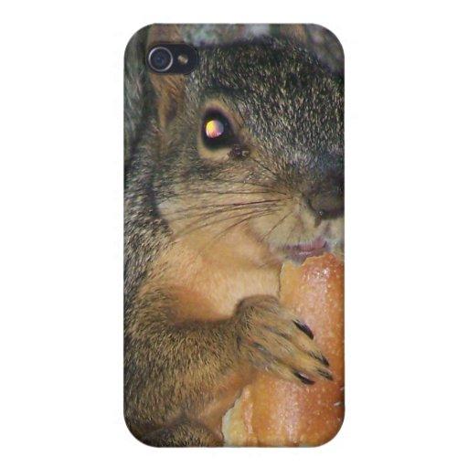 Ardilla de Fox adorable en un árbol que come un ro iPhone 4/4S Carcasas