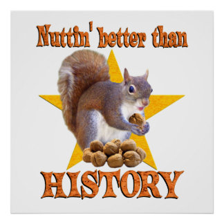 Ardilla de la historia póster