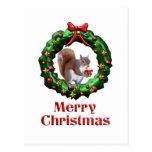 Ardilla de las Felices Navidad Postal