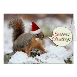 Ardilla de Navidad en nieve Tarjeta De Felicitación