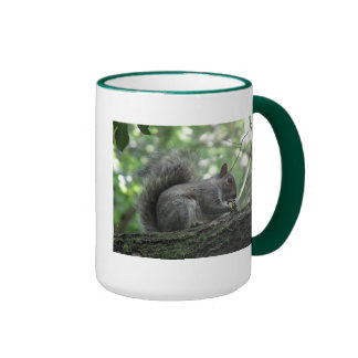 Ardilla de nuez taza de café