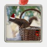Ardilla de Santa en cesta del navidad Nevado Ornamento De Navidad