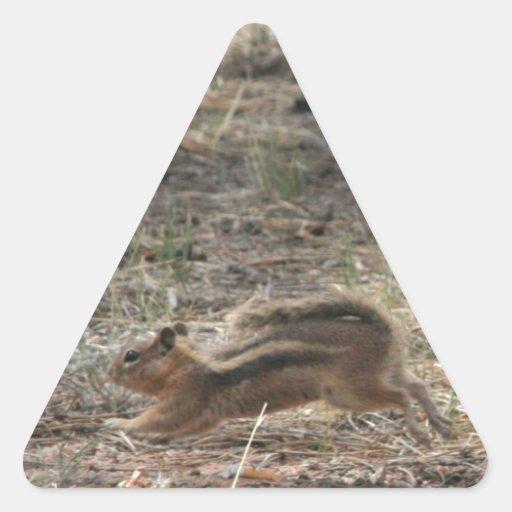 Ardilla de tierra corriente pegatina triangular