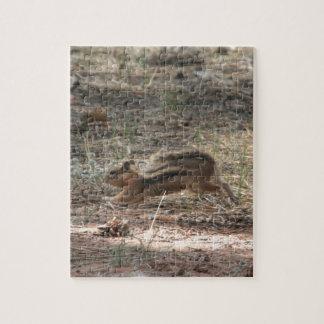 Ardilla de tierra corriente puzzle con fotos