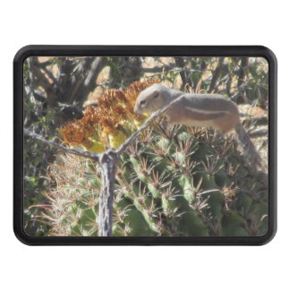 Ardilla de tierra en el cactus de barril tapas de remolque