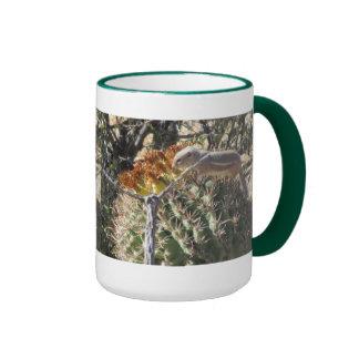 Ardilla de tierra en la taza del cactus de barril
