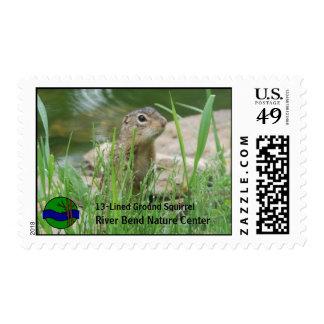 Ardilla de tierra que enarbola hacia fuera sellos postales