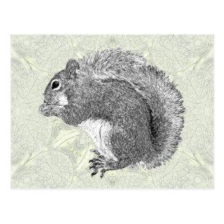 Ardilla del arte tarjeta postal
