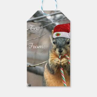 Ardilla del navidad etiquetas para regalos