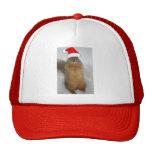 Ardilla del navidad gorras