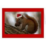ardilla del navidad tarjeta