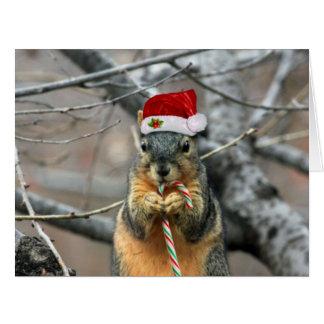 Ardilla del navidad tarjeta de felicitación grande