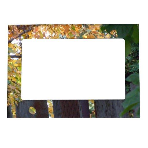Ardilla del otoño III Marcos Magnéticos De Fotos