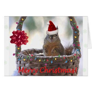 Ardilla divertida del navidad tarjeta pequeña