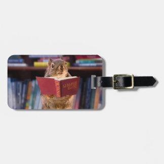 Ardilla elegante que lee un diccionario etiquetas para maletas