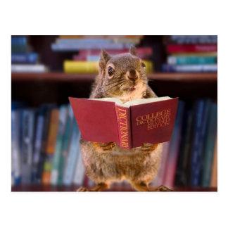 Ardilla elegante que lee un diccionario postal