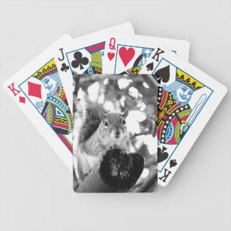 ardilla en animal lindo del bw del registro cartas de juego
