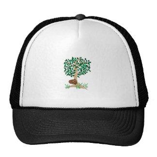 Ardilla en árbol gorros