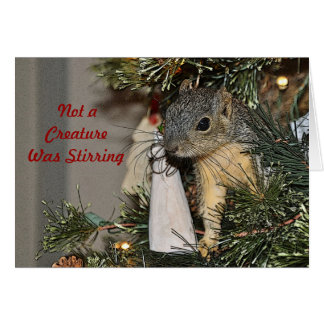 Ardilla en el árbol de navidad tarjeta de felicitación