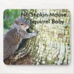 Ardilla en el árbol, ningún ratón de Stinkin….Ardi Tapete De Ratones