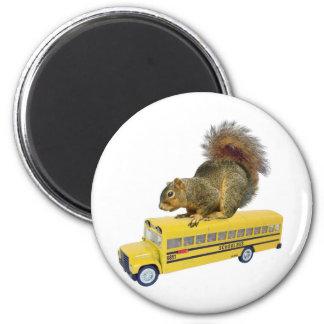 Ardilla en el autobús escolar imán redondo 5 cm
