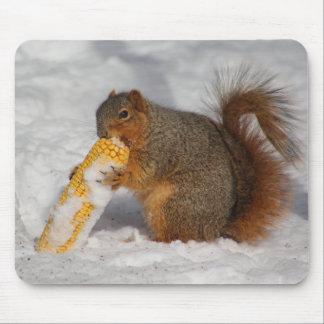 Ardilla en el cojín de ratón de la nieve tapetes de ratones