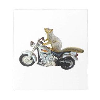 Ardilla en la motocicleta bloc de papel