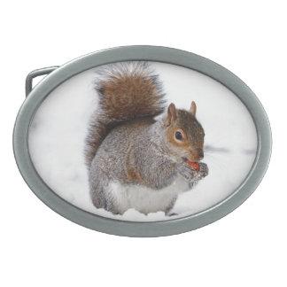 Ardilla en la nieve hebillas de cinturon