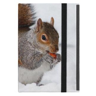 Ardilla en la nieve iPad mini coberturas