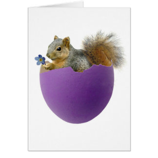 Ardilla en tarjeta de la cáscara de huevo