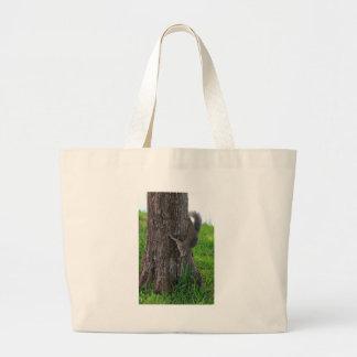 Ardilla en un árbol bolsa