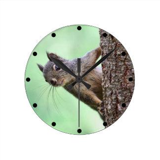 Ardilla en un árbol reloj de pared