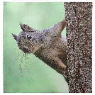 Ardilla en un árbol servilleta