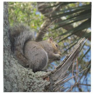 Ardilla en un árbol servilleta imprimida