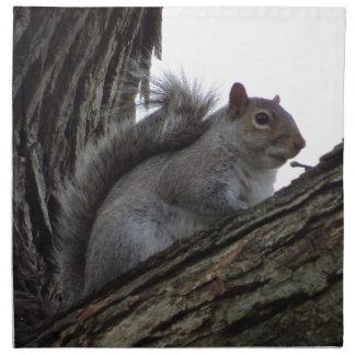 Ardilla en un árbol servilletas