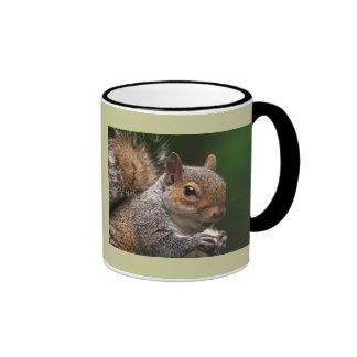 Ardilla gris taza de café