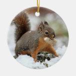 Ardilla linda en nieve con el cacahuete ornamentos de reyes magos