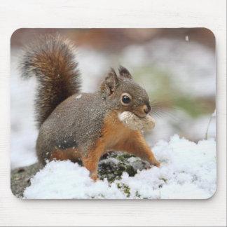 Ardilla linda en nieve con el cacahuete alfombrilla de ratón