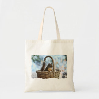 Ardilla linda en una cesta en invierno bolsa