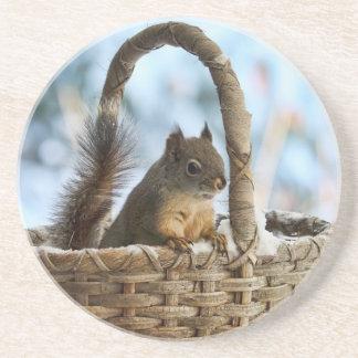 Ardilla linda en una cesta en invierno posavaso para bebida