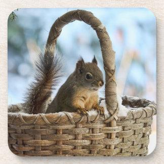Ardilla linda en una cesta en invierno posavasos