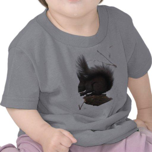 Ardilla linda que come el pino del cono camisetas